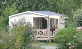 Rental - Mobil-Home Premium Loggia 30 M² Terrace Included - 2 Bedrooms - Camping LES CALQUIERES