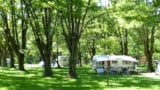 Pitch - Forfait 2 Pers + Véhicule + Tent/Caravan Or Camping-Car - Camping BELLE RIVE