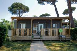 Accommodation - Mobile Home Leonardo Plus (Superior) - Montescudaio Village