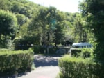 Establishment Camping Qualité La Riviere - Saint Hippolyte