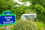Pitch - NATURE PACKAGE - Camping Domaine de  La SERRE