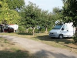 Pitch - Pitch electricity 10A + car + tent or caravan - Camping DU LAC