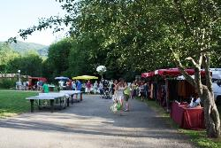 Leisure Activities Flower Camping L'arize - La Bastide De Serou