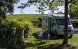 Pitch - Family Package + Electricity- 2 Adults + 2 Children Under 12 Years - VivaCamp La Grappe Fleurie