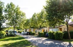 Establishment Camping La Grappe Fleurie - Fleurie