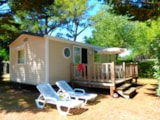 Rental - Ophéa Forêt 3 bedrooms 31m² - Camping Les Amiaux