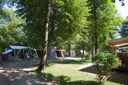 Pitch - Package: Pitch + Car + Tent Or Caravan - AIROTEL Camping Les Trois Lacs