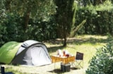 Pitch - Pitch large tent - Camping Plateau des Chasses