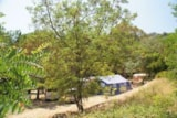 Pitch - Pitches Camp Sud - Camping Plateau des Chasses