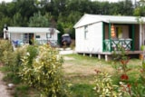 Rental - Bungalow Occitanie 39M² Sheltered Terrace 3 Bedrooms Wednesday - Camping du Chêne Vert