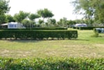 Pitch - Pitch Confort Plus (90m²): car + tent/caravan or camping-car + electricity 10A - Camping Playa Brava