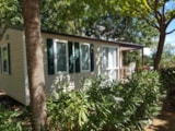 Rental - Mobil-Home Cottage Confort 29 M² - Flower Camping Le Fou du Roi