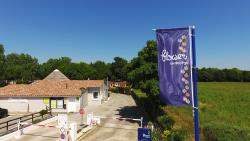 Establishment Flower Camping Le Fou Du Roi - Lansargues