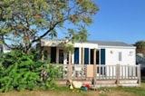 Rental - Mobil Home Flores Louisiane 31M² - 2 Bedrooms + Sheltered Terrace - Camping La Touesse