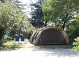 Pitch - Pitch + 1 car + tent , caravan or camping-car - Camping Le Barralet