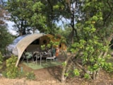 Pitch - Pitch Plus 60-75M²: Car + Tent/Caravan Or Camping-Car + Electricity - Camping Barco Reale