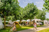 Pitch - Camping Pitch - Camping LE MONLOO
