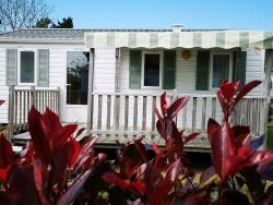 Accommodation - Mobil-Home Dune Confort 2 Bedrooms 29M² - Flower Camping Cabestan