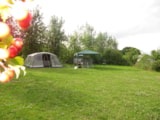 Pitch - Nature Package (1 tent, caravan or motorhome / 1 car) - Camping Ferme Pédagogique de Prunay