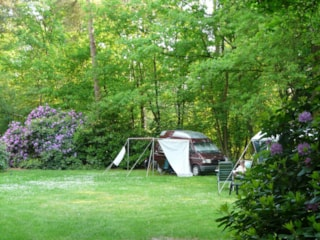 Camping Morgenrood - Oisterwijk