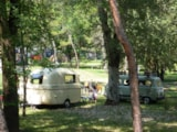 Pitch - Pitch(100 mq): car  + tent/caravan or camping-car + electricity - Camping Village Belvedere Pineta