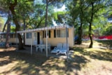 Rental - Mobilhome GREEN HOLIDAY - Camping Village Belvedere Pineta