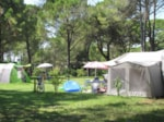 Establishment Camping Village Belvedere Pineta - Aquileia