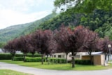 Pitch - Pitch + 4A electricity - Camping LE PYRENEEN