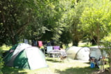 Pitch - Pitch + electricity 6 Amp - Camping LE PYRENEEN