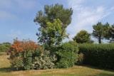 Pitch - Comfort pitch 80-89m² and over + 2 persons (car + caravan or tent + electricity) - Camping Des Hautes Grées