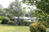 Pitch - Comfort pitch XL + 2 persons (car + caravan or tent + electricity) : - Camping Des Hautes Grées