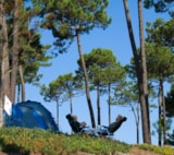 Pitch - Camping Pitches - Camping Vale Paraiso