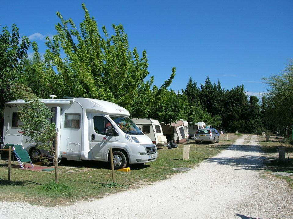 Emplacement - Emplacement - Camping Les Micocouliers