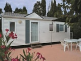 Rental - Mobile-Home - Camping Les Micocouliers