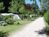 Pitch - Full service grass Pitch :  for tent, caravan or camper - Domaine Papillon