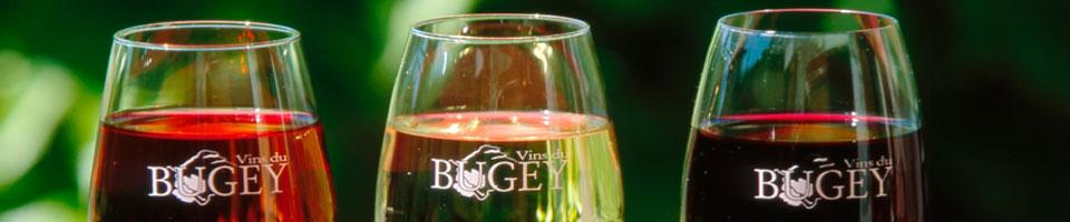 campsite wines of the Bugey in ain